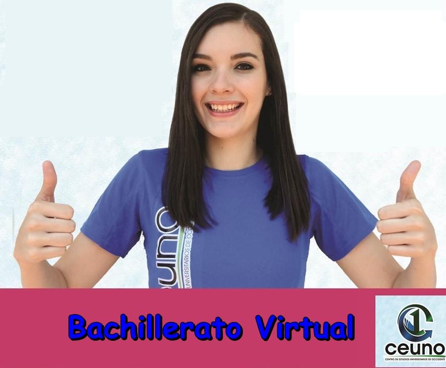 bachillerato virtual